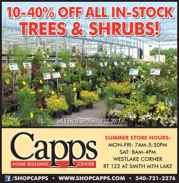 trees and shrubs on sale