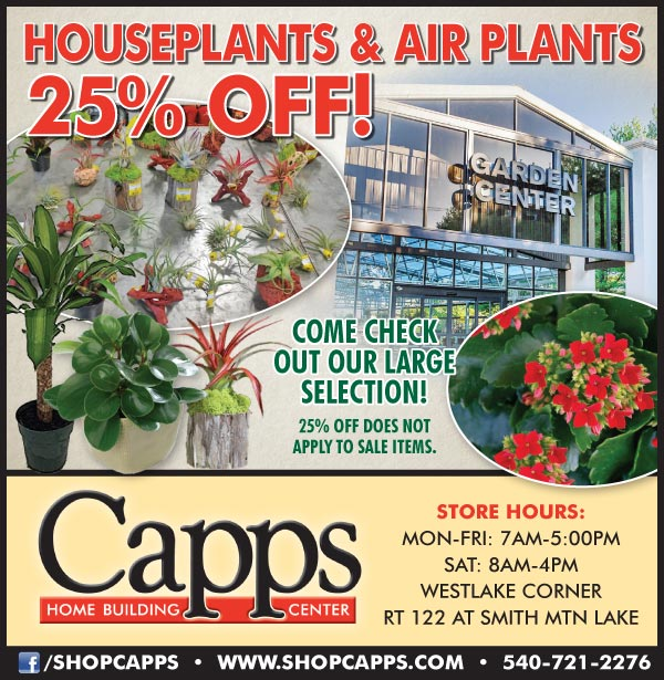 sale ad for houseplants