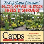 tree and shrub clearance ad