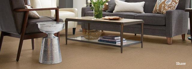 Carpet Floors Retailer